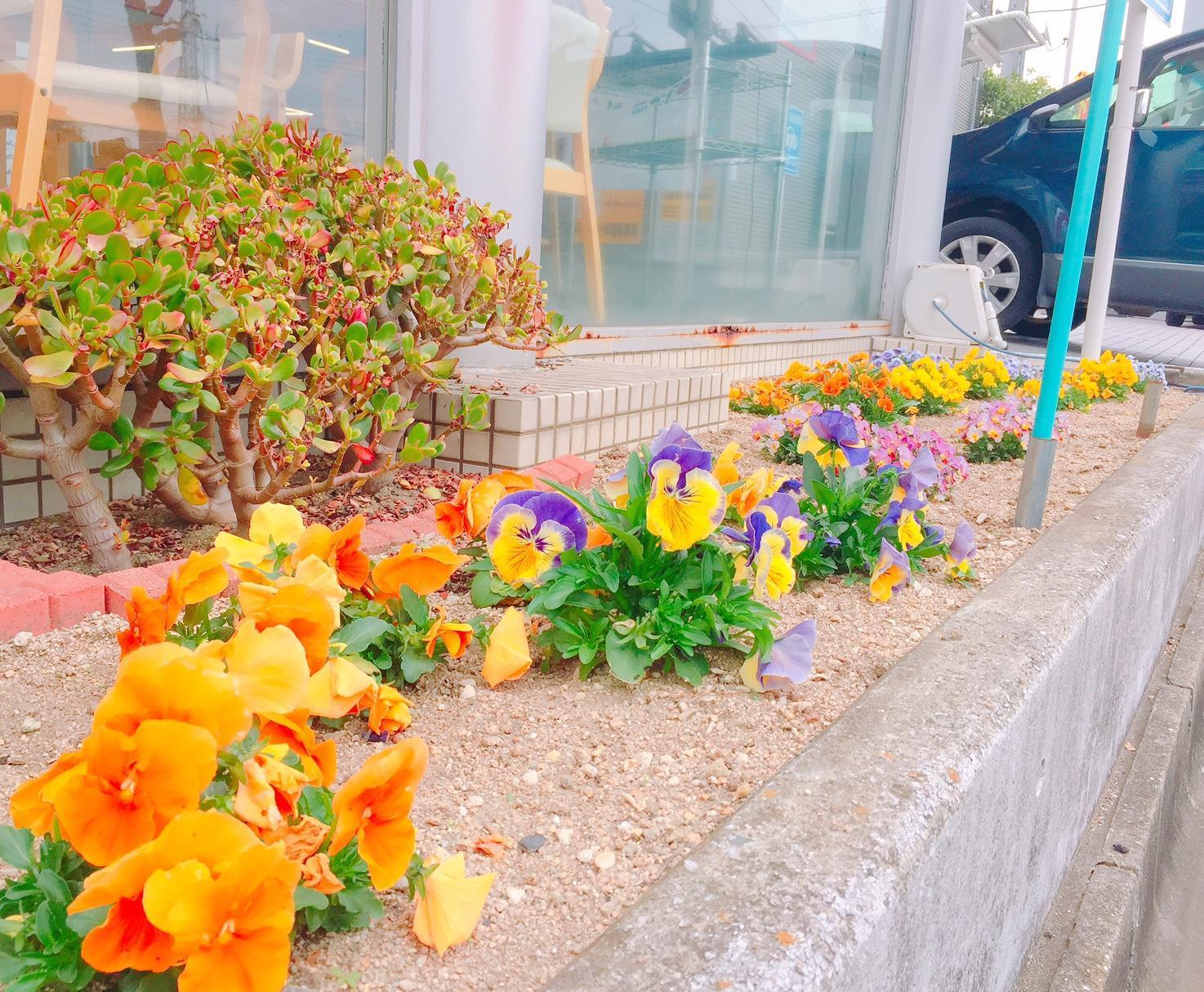 https://www.hyogo-mitsubishi.com/shop/takarazuka/files/e6f5bf5f1dcb85a74bdd4bf249b06c1a0c11b844.JPG